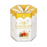 Boîte de 12 Zodiac Bloom!